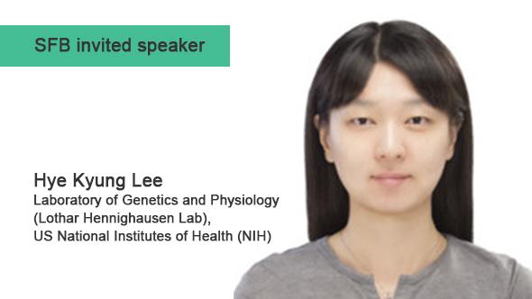 Hye Kyung Lee