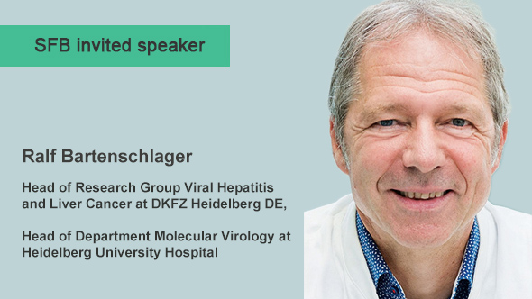 Ralf Bartenschlager: Research network on hepatitis virus persistence and antiviral immunity